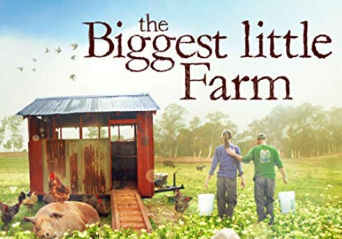 Filmhuis oktober – The little biggest farm